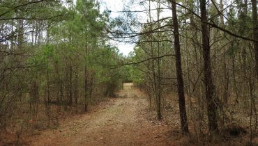 72 Ac. Lower Mill Creek Rd (9719)