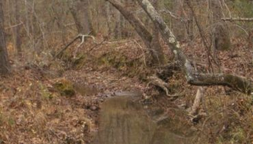 662 Acres on Hall's Valley Rd.