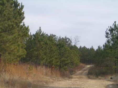 Acreage on Silver Comet Trail (A)