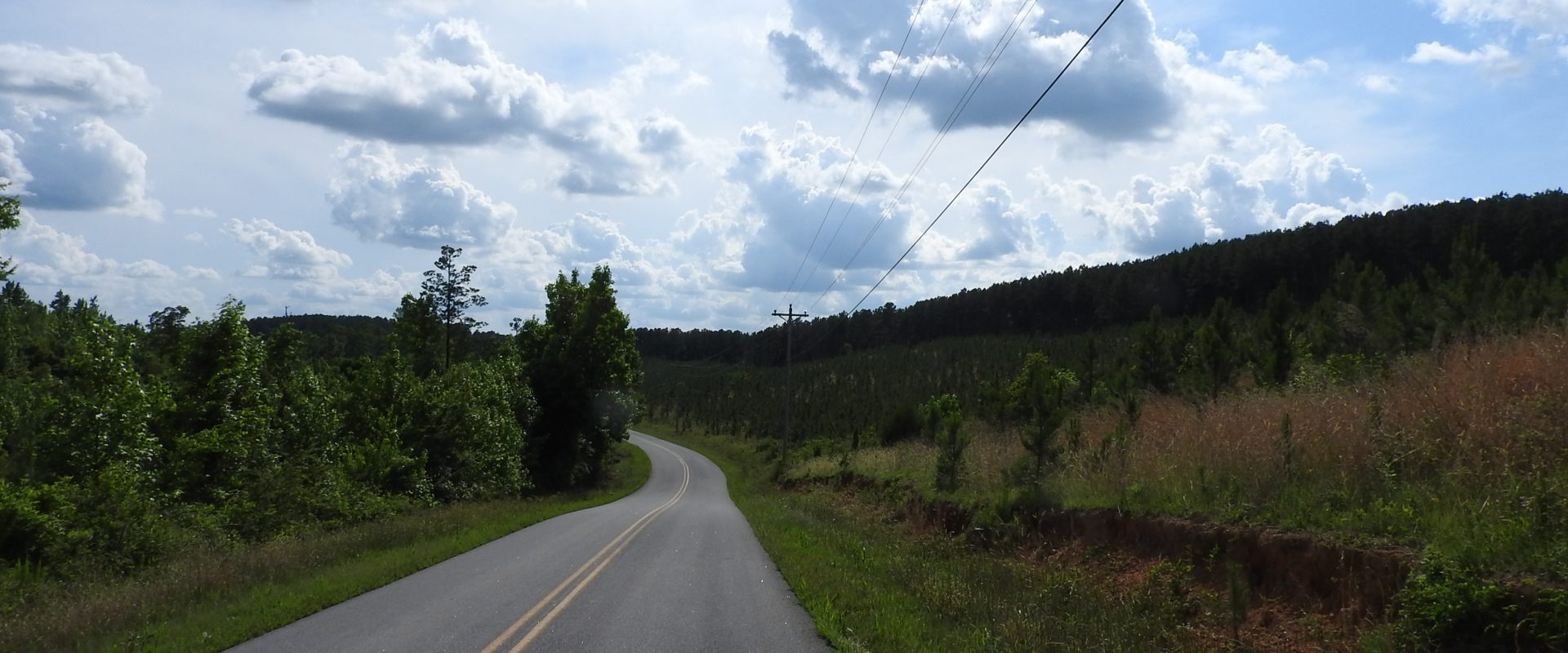 Trimble Hollow Road (5001)