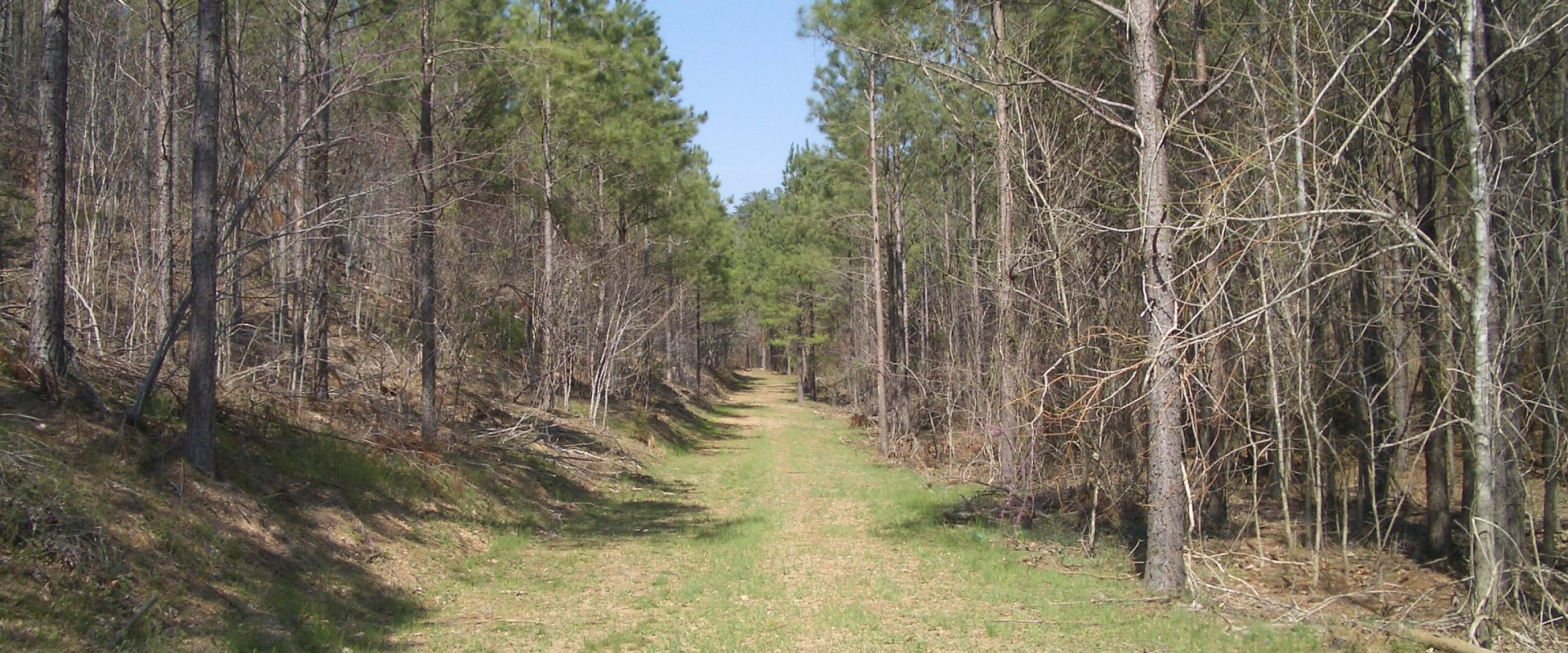 616 Acres on Shirley Road