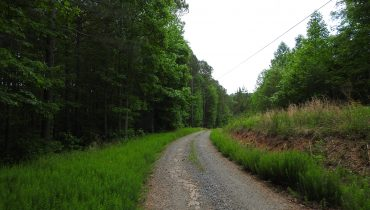 99 Ac. Pickens County (9684)